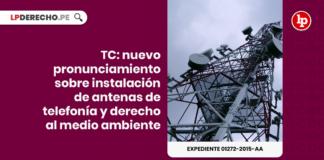 TC: Nuevo pronunciamiento sobre instalación de antenas de telefonía y derecho al medio ambiente con logo de LP