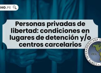 Personas privadas de libertad: condiciones en lugares de detención y/o centros carcelarios