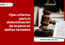Fijan criterios para la determinación de la pena en delitos tentados