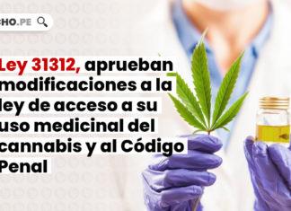 cannabis medicinal-LP