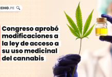 proponen-legalizacion-autocultivo-cannabis-medicinal-LP