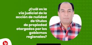 Cual es la via judicial de la accion de nulidad de titulos de propiedad otorgados por los gobiernos regionales con logo de LP