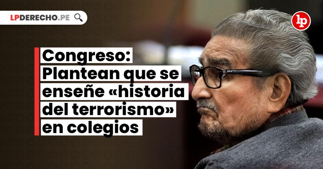 Congreso: Plantean que se enseñe «historia del terrorismo» en colegios