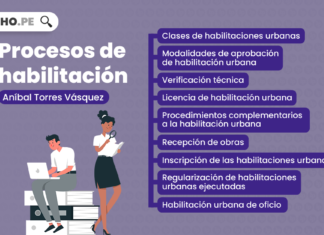 Procesos de habilitación, explicado por Aníbal Torres Vásquez