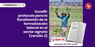 Sunafil: protocolo para la fiscalización de la formalización laboral en el sector agrario (versión 2)