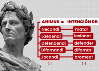 Animus-derecho-penal