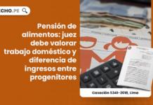 Pensión de alimentos: juez debe valorar trabajo doméstico y diferencia de ingresos entre progenitores