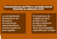Conclusiones del Pleno Jurisdiccional Distrital en Materia Civil - LPDerecho