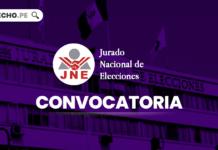 Convocatoria-Jurado Nacional de Elecciones-LP