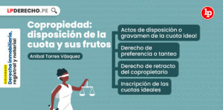 Copropiedad: disposición de la cuota y sus frutos, explicado por Aníbal Torres Vásquez