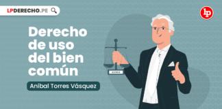 Derecho de uso del bien común, explicado por Aníbal Torres Vásquez