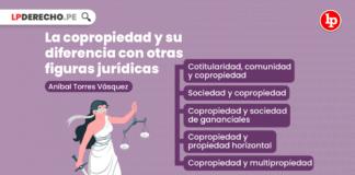 La copropiedad y su diferencia con otras figuras jurídicas, explicado por Aníbal Torres Vásquez