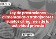 Ley de prestaciones alimentarias a trabajadores sujetos al régimen de la actividad privada