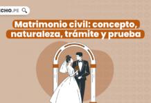 Matrimonio civil: concepto, naturaleza, trámite y prueba