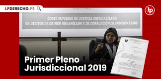 Primer Pleno Jurisdiccional 2019-LP