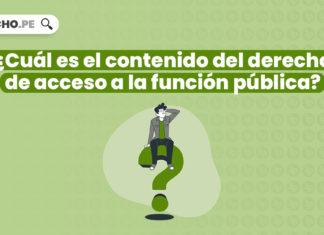 ¿Cuál es el contenido del derecho de acceso a la función pública?