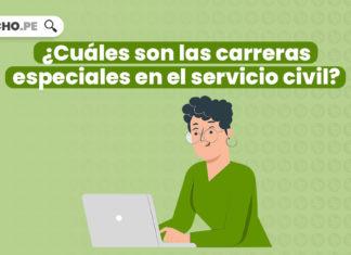 ¿Cuáles son los regímenes generales del servicio civil?