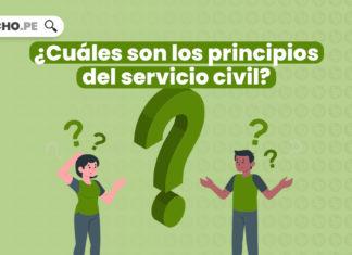 ¿Cuáles son los principios del servicio civil?