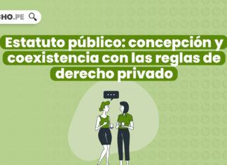 Estatuto público: concepción y coexistencia con las reglas de derecho privado