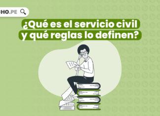¿Qué es el servicio civil y qué reglas lo definen?